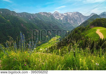 Stunning Spring Scenery With Alpine Meadows And Snowy Mountains In Slovenia. Logarska Dolina And Alp