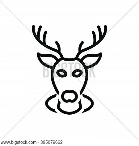 Black Line Icon For Buck Deer Stag Reindeer Animal Head Decorative Haunting Heraldic Wild Horn