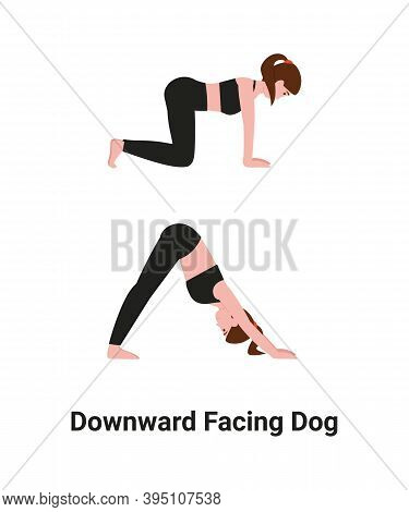 Woman Do Adho Mukha Svanasana Or Downward Facing Dog Pose Yoga For Back Pain. Flat Vector Cartoon Is