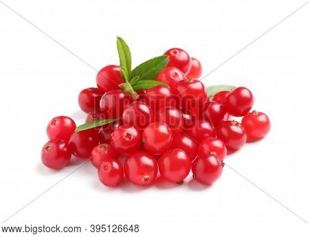 Pile Of Fresh Ripe Cranberries With Leaves On White Background