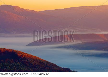 Cold Morning Fog With Golden Hot Sunrise In The Valley Of Carpathian Mountain Range. Green Grass And