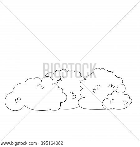 Black And White Vector Illustration Of Trimmed Bushes For Coloring. Landscaping