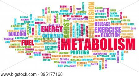 Metabolism in Your Body Chemical Reaction Concept