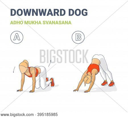 Woman Doing Downward Dog Home Workout Exercise Guide Colorful Concept Illustration.