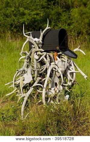 Antler Covered Mailbox