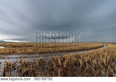 Long Exposure Over The Flooded Rice Fields In Albufera