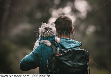 Hiking With Cat. Cat Sitting On The Shoulder. Walking The Cat. People And Pets. Human And Animal. Hu