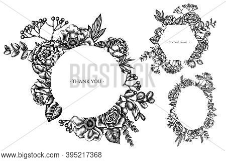 Floral Frames With Black And White Roses, Anemone, Eucalyptus, Lavender, Peony, Viburnum Stock Illus