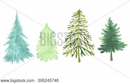 Colorful Christmas Trees Collection, Different Forms Of Species, Watercolor Green And Blue Color, As