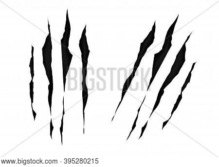 Claws Scratches Isolated On White Background. Print Claw Marks, Tiger, Bear Or Monster. Scratches, H
