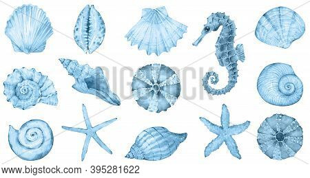 Watercolor Sea Collection - Blue Shells, Seahorse, Sea Star. Original Hand Drawn Illustration In Vin