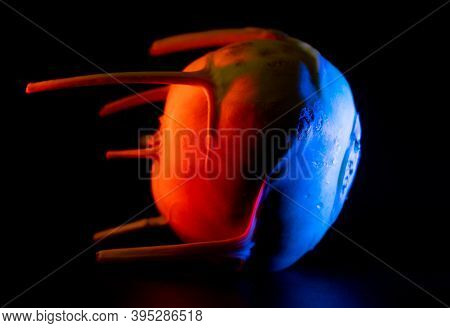 Bucharest, Romania - July 03, 2020: A Blue And Red Illuminated Kohlrabi That Looks Like A Satellite.