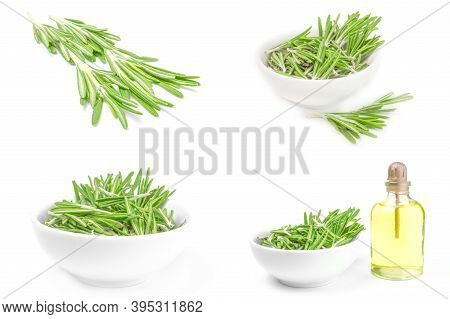 Set Of Rosemary Isolated On A White Background Cutout