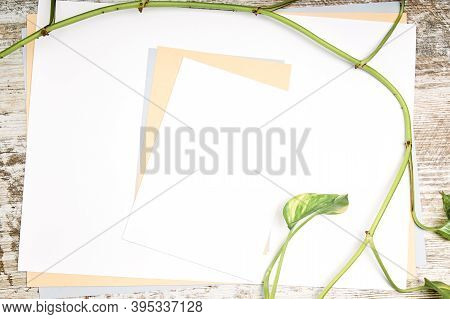 Sheets Of Paper With Plants And Copy Space On A Wooden Table. Publicity Concept