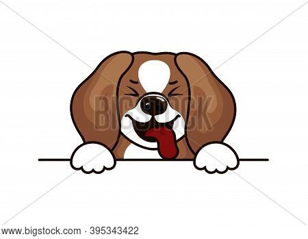 Beagle Dog - Vector Illustration Design For T Shirts. Cute Beagle Icon, Small Hunting Dog. Vector Il