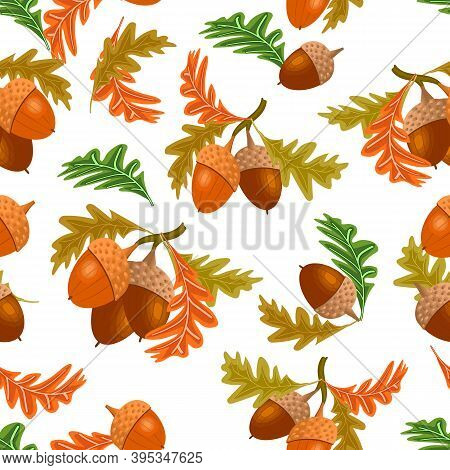 A Pattern Of Acorns And Leaves.acorns And Autumn Leaves In A Colored Pattern On A White Background.