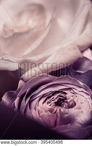 Floral Bouquet As Gift, Rose Flowers Arrangement At Flower Shop Or Online Delivery, Romantic Present