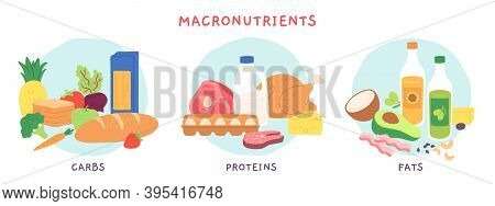 Food Macronutrients. Fat, Carbohydrate And Protein Foods Groups With Fruits And Dairy Products. Nutr