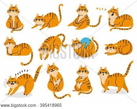 Cat Poses. Cartoon Red Fat Striped Cats Emotions And Behavior. Animal Pet Kitten Playful, Sleeping A