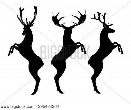 Rearing Up Deer Stag With Beautiful Antlers - Black And White Vector Heraldic Design Silhouette Set