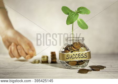 Success. Glass Jar With Coins And A Plant, In The Background A Female Hand Puts Coins Near A Glass J