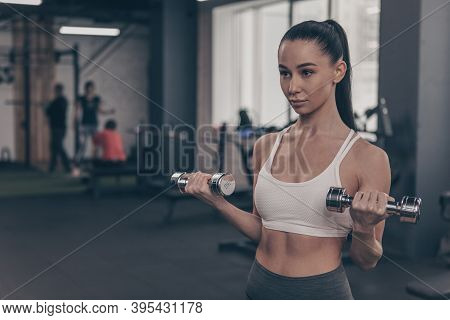 Attractive Female Athlete In Sportswear Exercising At The Gym, Lifting Dumbbells. Beautiful Fitness