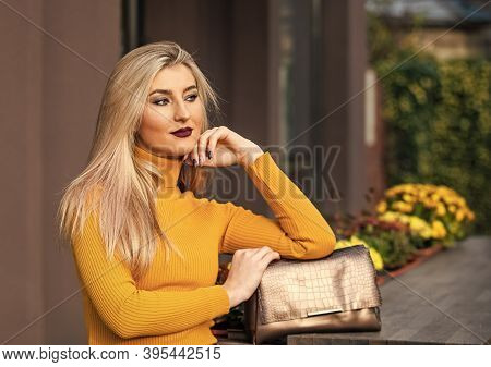 Fashion Purse. Pretty Woman And Her Beautiful Purse. Womanhood Concept. Comfy Format. Fashionable Fe
