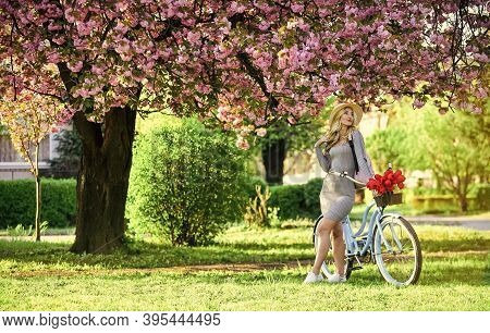 Planning The Journey. Pink Blossoming Sakura. Relax In Park. Fashion And Beauty. Woman Vintage Bicyc