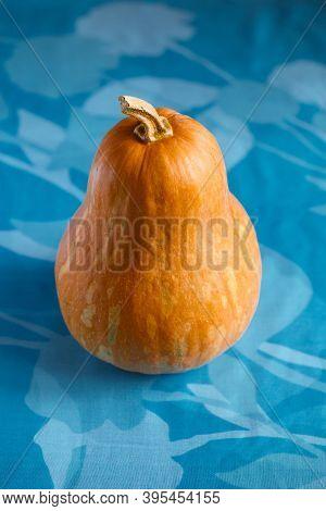 Fresh Butternut Squash On The Grey Background. Butternut Pumpkin. Halves Of Raw Orange Pumpkin. Cont