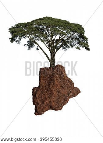 soil map of Botswana with acacia tree isolated on white
