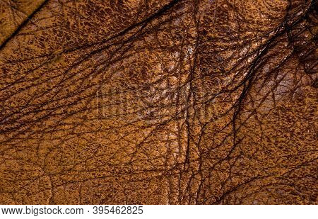 Old Vintage Genuine Soft Brown Leather Texture Background, Top Layer With Pores And Scratches, Macro