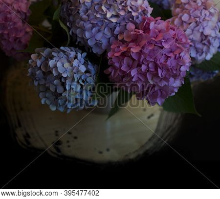 Blossoming Flower Bouquet Of Fresh Hydrangea On Table. Bunch Of Blue, Pink Hydrangeas. Tender Flower
