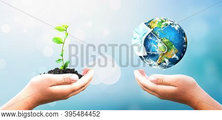 Charity Concept: Hands Holding Earth Globe And Tree Over Blurred Nature Background. Elements Of This