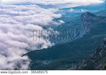Heavy Fog In The Mountains In Sunset. Creamy Fog Covered The Mountain Valley In Sunset Light. High S