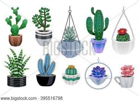 Cactus In Pot Set With Isolated Icons Of Colourful Cactus Plants And Pots Of Various Design Vector I