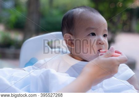 Adorable  Cute Little Asian Baby Boy Eating Tasty Food Feeding By Mother In The Garden