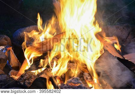 Burning Firewood In A Fire. Bright Fire. Tongues Of Flame Of Orange Color. Romantic, Flaming.