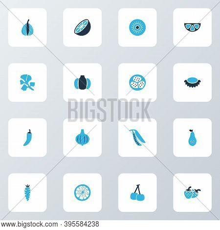 Fruit Icons Colored Set With Pear, Kiwifruit, Bulb And Other Coriander Elements. Isolated Vector Ill
