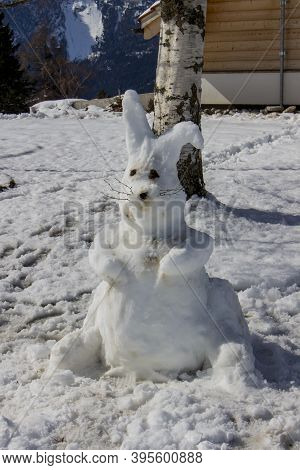 A Hare In The Swiss Alps On A Sunny Day In The Winter