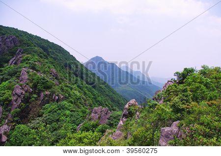 top of mounain at summer