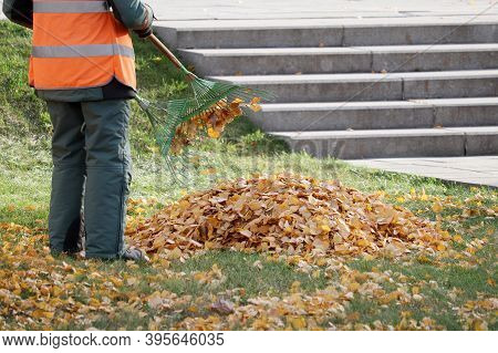 Janitor Sweeping The Fallen Leaves On Autumn Street. Cleaning Leaves In The City Park, Street Sweepe