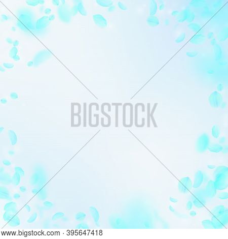 Turquoise Flower Petals Falling Down. Exceptional Romantic Flowers Vignette. Flying Petal On Blue Sk