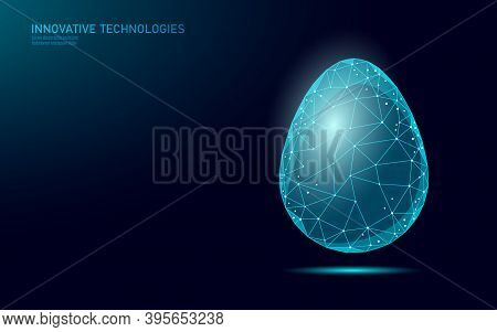 Egg Low Poly Design Business Concept. Polygonal Triangle Design Creative Idea Solution Banner Templa