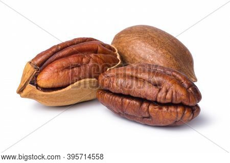 Pecan Nut Isolated On White Background. Walnut In Shell And Peeled