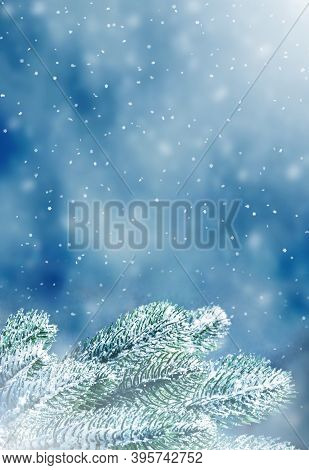 Winter Christmas Background With Fir Tree Branch. Merry Christmas And Happy New Year Greeting Card W