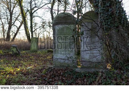 Jastrowie, Wielkopolskie / Poland - November, 20, 2020: Old Jewish Cemetery. Matzevot Among Forest T