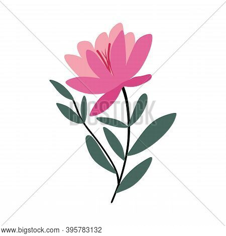 Flowers On White Background. Modern And Flat Color Flower And Leaf Clipart. Spring Foliage Set For F