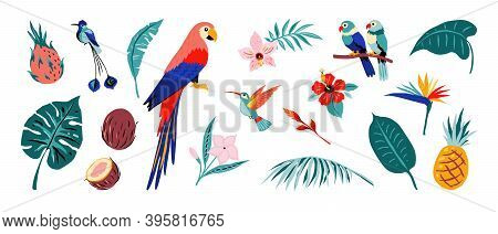 Tropical Poster. Jungle Flora And Fauna. Exotic Flowers And Fruits, Palm Or Monstera Leaves, Colorfu