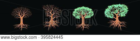 Set Of Tree With Roots In Various Models. Modern Cartoon Icon Design Template Isolated On Black. Mod