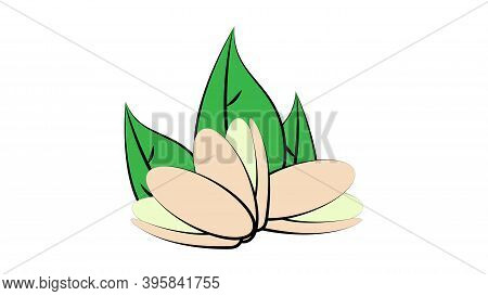 Pistachios On A White Background, Vector Illustration. Nuts For Food And Drinks. Green Pistachios As